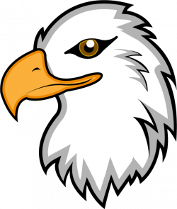 Beak clipart american eagle