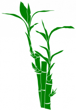Stem clipart bamboo shoot