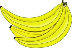 Banana clipart banana bunch