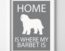 Barbet clipart comb