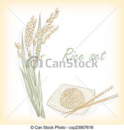 Barley clipart padi field