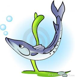Barracuda clipart cute