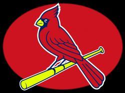 Cardinal clipart st louis cardinals