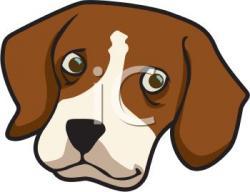 Beagle clipart head