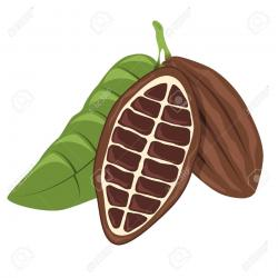 Cocoa Bean clipart cartoon