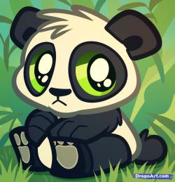 Drawn panda