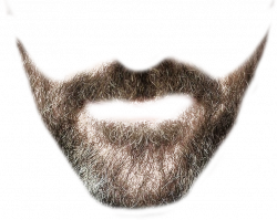 Beard clipart stylish