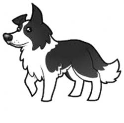 Sheepdog clipart border collie
