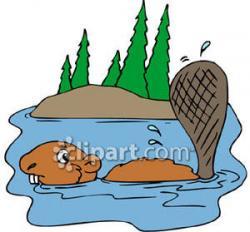 Beaver clipart swimming