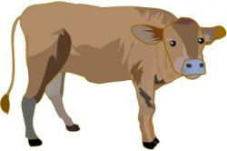 Beef clipart brown cow