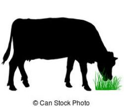 Cattle clipart cow grazing