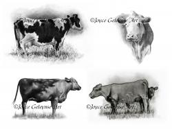 Drawn farm animals