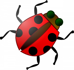 Beetles clipart animated