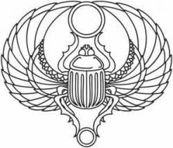 Drawn beetles egyptian