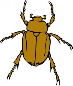 Beatle clipart bettle