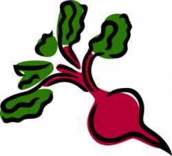Beetroot clipart cartoon