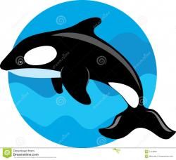 Flippers clipart whale
