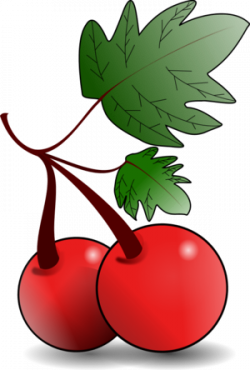 Cherry Tree clipart berry