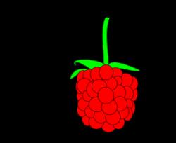 Rapsberry clipart berry