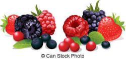 Basket clipart berry