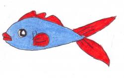 Betta clipart blue fish
