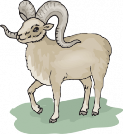 Dall Sheep clipart cartoon