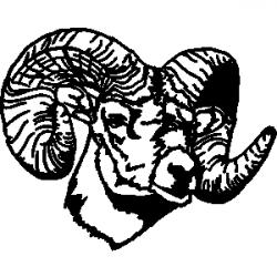 Ssckull clipart bighorn sheep