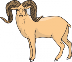 Bighorn Sheep clipart