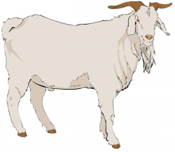Mountain Goat clipart billy goat