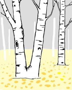 Branch clipart birch