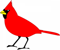 Cardinal clipart cartoon