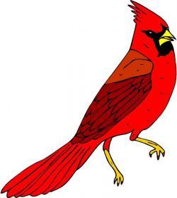 Cardinal clipart red cardinal