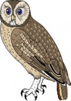 Bird Of Prey clipart