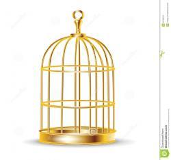 Parrot clipart cage