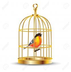 Canary clipart birdcage