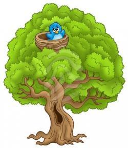 Bird's Nest clipart tree clipart