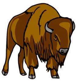 Beef Jerky clipart buffalo