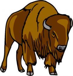 Bison clipart vector