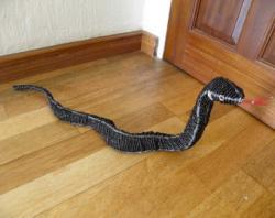 Black Mamba clipart boa constrictor