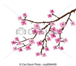 Drawn sakura blossom