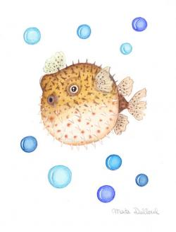 Blowfish clipart under sea