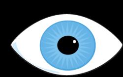 Eyelash clipart blue eye