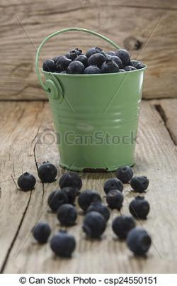 Blueberry clipart bucket