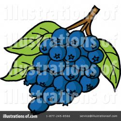 Blueberry clipart bunch