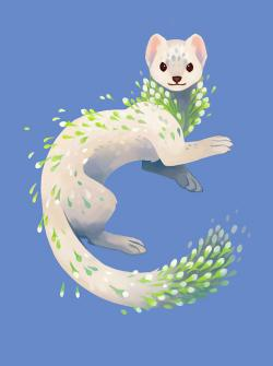 Drawn ferret
