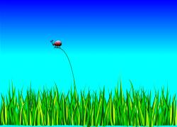 Blur clipart ladybug