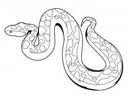 Boa Constrictor clipart green snake