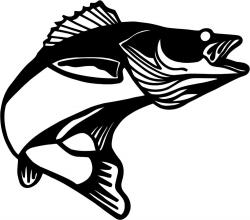 Fishing clipart walleye