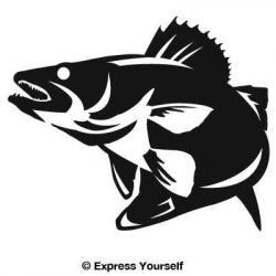 Grouper clipart walleye