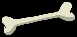 Bones clipart